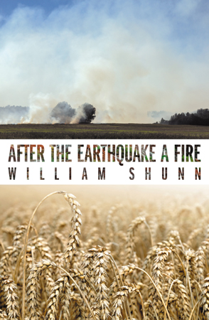 'After the Earthquake a Fire' by William Shunn