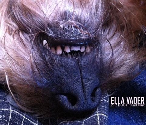 Ella Vader 2012 13-Month Calendar