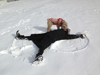 Ella's interrupting a snow angel