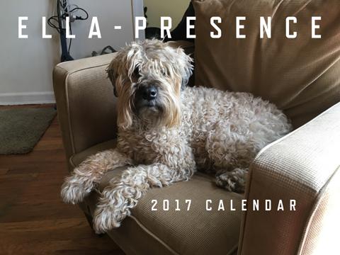 2014 Ella-Ternative 13-Month Calendar