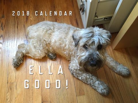 2018 Ella Good! 13-Month Calendar
