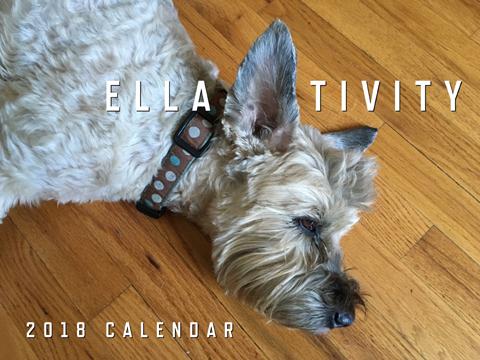 Ella-tivity 2018 13-Month Calendar